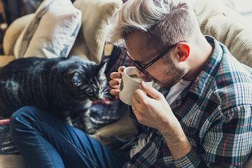 Ce fac toti iubitorii de pisici in SECRET. E destul de ciudat, dar nu se pot abtine!