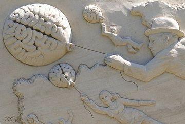 Cat de mic e creierul femeilor comparativ cu al barbatilor. Raspunsul e uimitor!