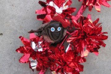Traditii si obiceiuri Sfantul Vasile: Practici magice! Ce sa NU faci azi pentru a avea noroc tot anul!