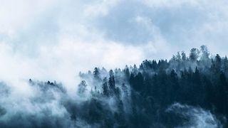 Prognoza meteo: Ninsori si ger cumplit in acest weekend