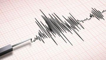 Cutremur in Romania, in urma cu putin timp. Ce intensitate a avut