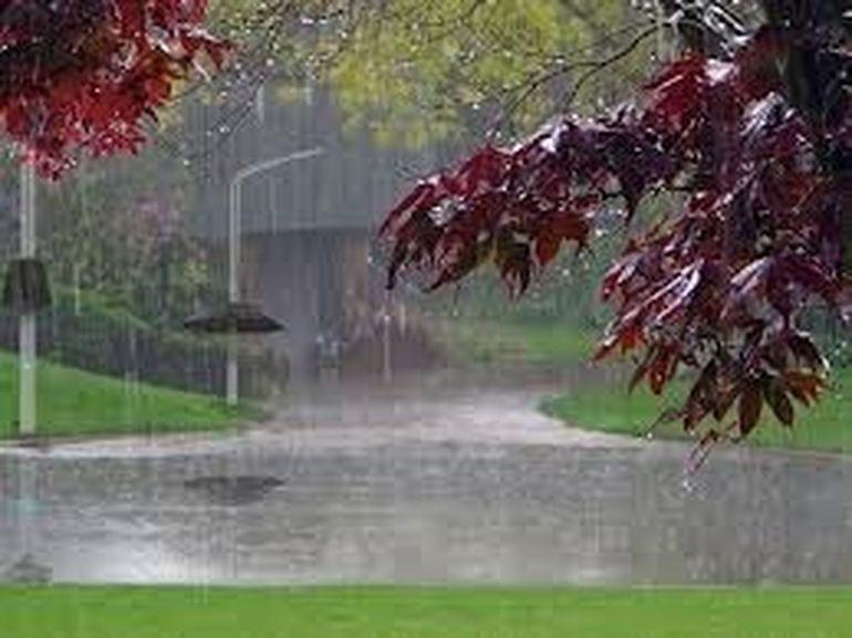 COD GALBEN de ploi pentru Bucuresti si alte noua judete! Afla care sunt zonele vizate