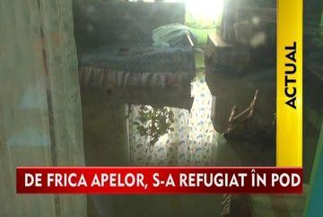IMAGINI apocaliptice! S-au refugiat in pod de teama sa nu ii ia apele VIDEO