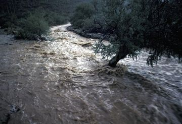 AVERTIZARE: COD GALBEN de crestere a debitelor Dunarii! Ce judete sunt afectate