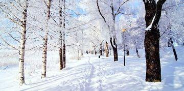 PROGNOZA METEO: Pana cand va mai ninge? Vezi cum va fi vremea pana pe 10 februarie
