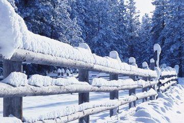 PROGNOZA METEO pana pe 3 februarie: Vreme mai calda decat in mod obisnuit!