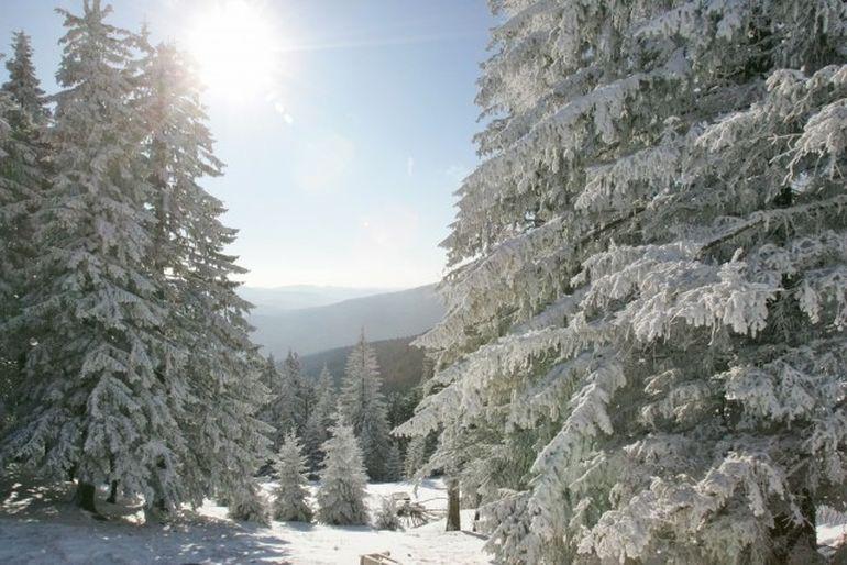 PROGNOZA METEO: Temperaturile vor continua sa creasca! Cum va fi vremea VINERI