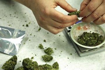 Este OFICIAL: In Washington consumul de marijuana in scop recreatinal a fost LEGALIZAT! Cum s-a sarbatorit acest eveniment