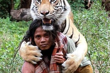 POVESTEA EMOTIONANTA a prieteniei dintre un om si un tigru! FOTO si VIDEO