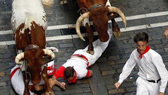 RITUALUL care ar putea omori zeci de oameni. Cum se lasa indienii calcati de turmele de vaci! VIDEO