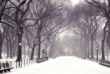 PROGNOZA METEO: Cand vine iarna? Iata cum va fi vremea pana in data de 25 noiembrie