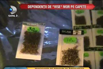 DESCINDERI IN FORTA! O retea de traficanti de droguri, anihilata de oamenii legii VIDEO