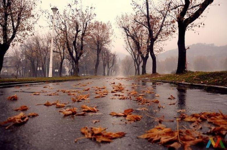 PROGNOZA METEO: Cum va fi vremea pana pe 5 noiembrie!
