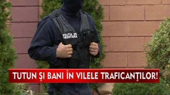 Traficanti prinsi cu tutun si bani in vile VIDEO