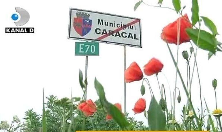 Adevar sau minciuna: La Caracal s-a rasturnat caruta cu prosti? Un reportaj marca Asta-i Romania