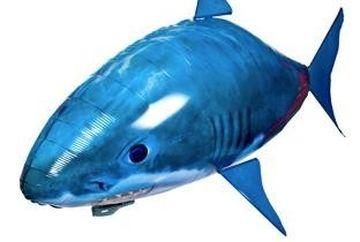Un pilot a raportat aparitia unui rechin la 7000 m altitudine. Oare cum a fost posibil asa ceva? VIDEO