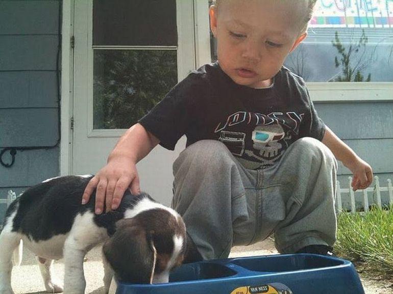 ADORABIL - Un baietel isi invata cainele cum trebuie sa manance! Vezi in FOTO