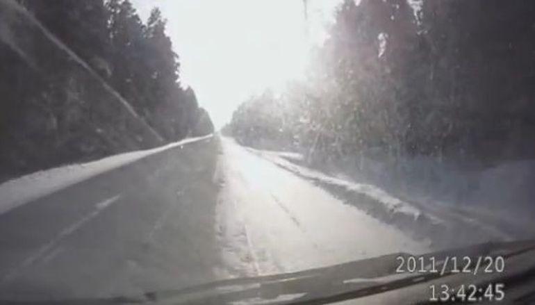 Au fost la un pas de tragedie! Un sofer a adormit in timp ce conducea. VIDEO