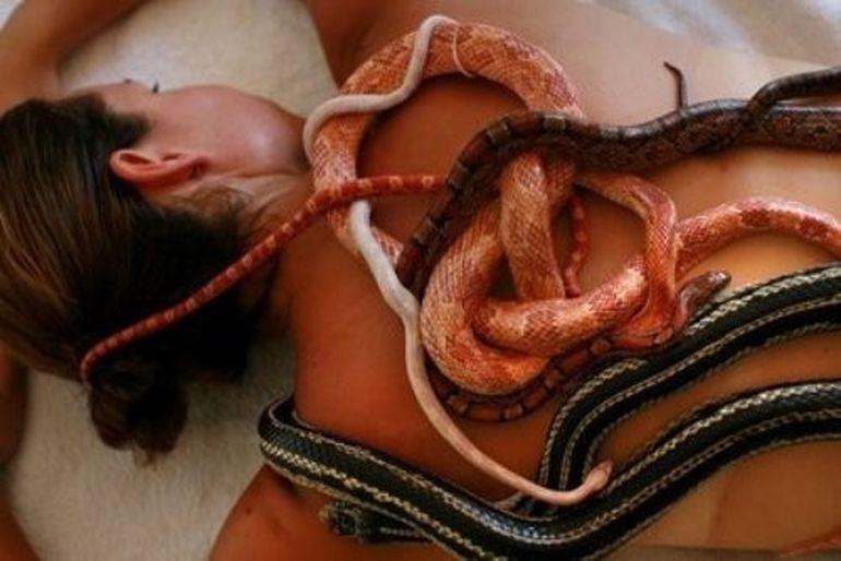 Intr-o camera de hotel din Germania au fost gasiti 100 de serpi. Uite ce s-a intamplat!