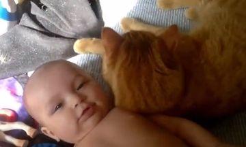 Ti-e frica sa cresti copilul in preajma unei pisicute? Uite un clip te face sa te razgandesti