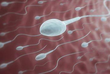 Barbatii care vor copii trebuie sa afle asta! Legatura nestiuta dintre fructe, legume si calitatea spermei!