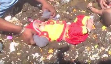 E incredibil ce se intampla in India: parintii isi arunca copiii in balegar de vaca si ii rostogolesc de pe o parte pe alta! Uite ce cred ei ca se intampla daca fac acest lucru