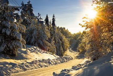 Prognoza meteo pe doua saptamani! Cum va fi vremea pana pe 17 ianuarie
