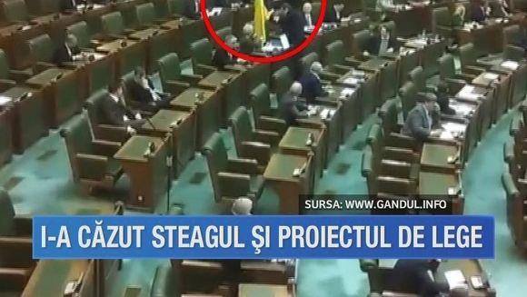 Incident neplacut pentru senatoarea Cristiana Anghel! I-a picat in cap steagul daruit de Ilie Nastase