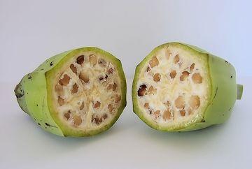 Cel mai ciudat fruct! N-ai vazut niciodata asa ceva. Pare un castravete, dar de fapt e cu totul diferit