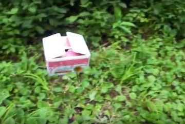 Se plimba prin padure si a ramas uimit cand a vazut in iarba o cutie alba. S-a dus sa vada ce e in ea, dar cand a deschis-o i sau inmuiat picioarele! Uite ce a descoperit