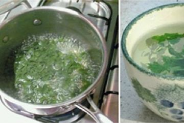 Pare greu de crezut, dar e adevarat: a slabit 5 kilograme in doar 3 zile dupa ce a baut acest ceai! Uite ce planta miraculoasa se afla in bol
