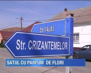 Un sat din Timis este tot timpul anului inflorit! Autoritatile locale au botezat toate strazile cu nume de flori
