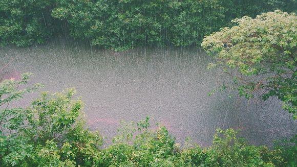 Cod galben de ploi insemnate cantitativ! Vezi harta zonelor afectate