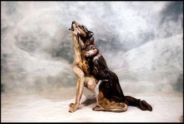 Trei tinere dezbracate se afla in aceasta pictura care infatiseaza un lup. Le poti identifica?