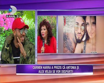 """Alex Velea: """"Te iubesc, Antonia! Sa nu ma parasesti!"""". Dupa ce Carmen Harra i-a prezis despartirea de Antonia, artistul a venit sa ii dea replica!"""