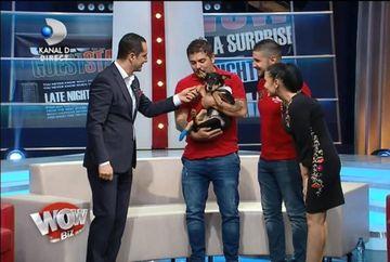 Madalin Ionescu SALVEAZA suflete! A gasit un catel care abia se tara si cazuse in canal - De ce surpriza a avut parte in direct, la WOWbiz