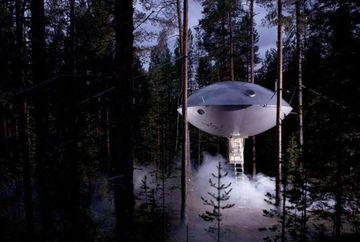 Se CAMUFLEAZA perfect cu natura! Cele mai frumoase case in copac GALERIE FOTO
