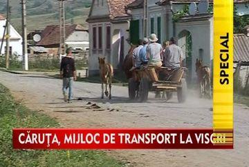 Caruta, mijlocul de transport oficial din satul Viscri! VIDEO