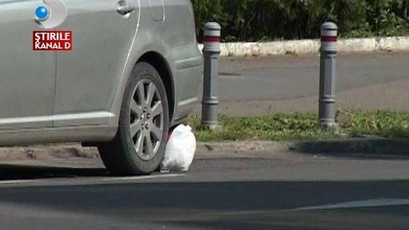 Amenintare cu BOMBA. Un telefon anonim anunta prezenta unui pachet suspect sub masina unei judecatoare VIDEO
