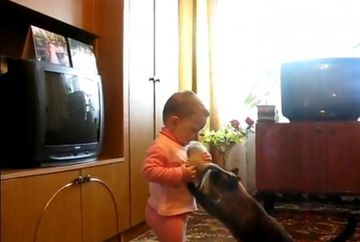 ADORABIL! O fetita si o pisica se lupta pentru dragostea unui pisoi VIDEO