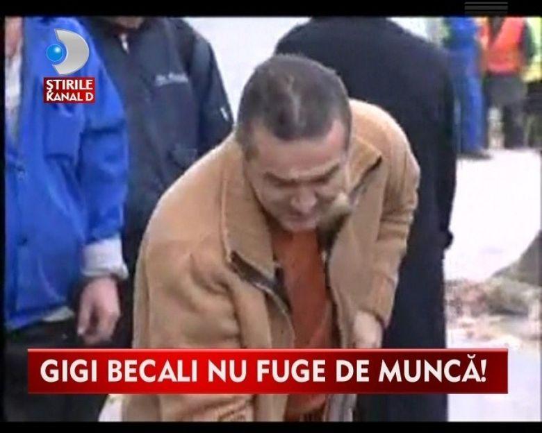 Ce ACTIVITATI poate executa Gigi Becali in penitenciar pentru a i se reduce pedeapsa VIDEO