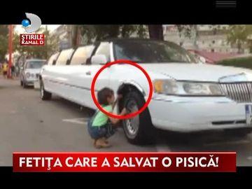 A ajuns vedeta pe internet! Iata cum incearca o fetita din Galati sa salveze o pisica VIDEO