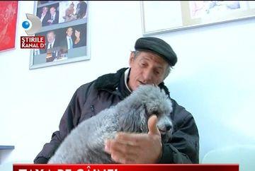 TAXA PE CAINI, o noua gaselnita a edililor din Timisoara VIDEO