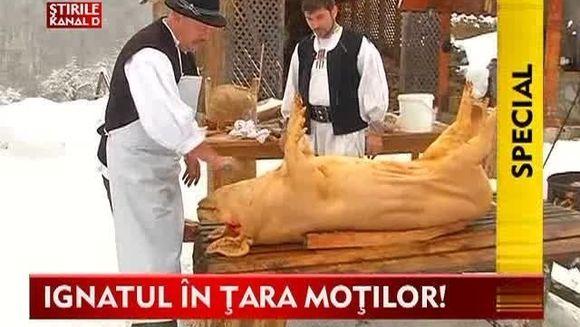 Ignatul in Tara Motilor! Locul unde porcul se sacrifica respectand traditiile VIDEO