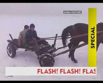 N-ai sa crezi!Uite cum se fac drifturile cu caruta si calul pe ulitele satului!VIDEO