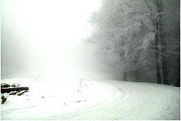 COD GALBEN de ceata in 18 judete si Bucuresti. Curse aeriene afectate de ceata