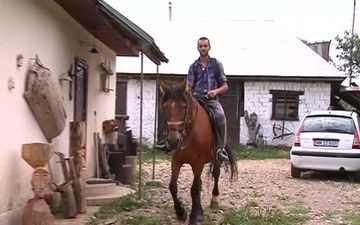 Stiai ca poti face SHOPPING cu calul! Uite cea mai TARE FAZA pe care sigur nu ai cum s-o ratezi