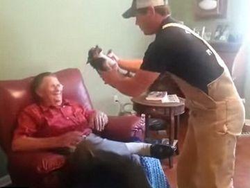 REACTIA UIMITOARE a unui chihuahua in momentul in care este luat in brate de o persoana pe care nu o place!