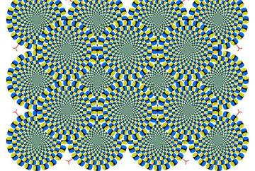 Priveste cu atentie aceasta imagine! Poti sa faci cercurile sa se opreasca?