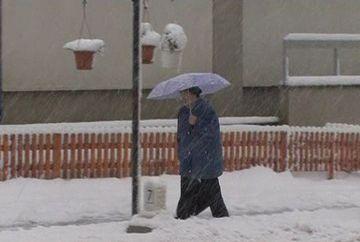Iarna s-a intors in forta: in Maramures ninge de parca ar veni Craciunul!